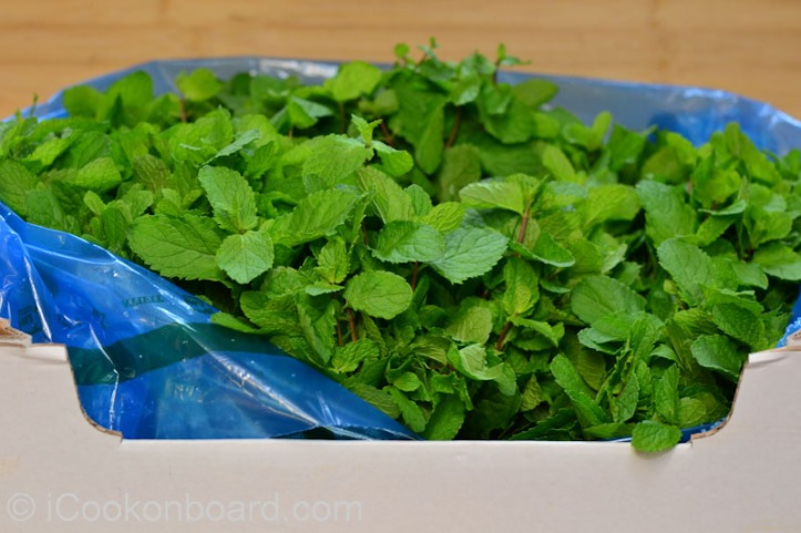 One Full Box of Fresh Mint from Belgium =)