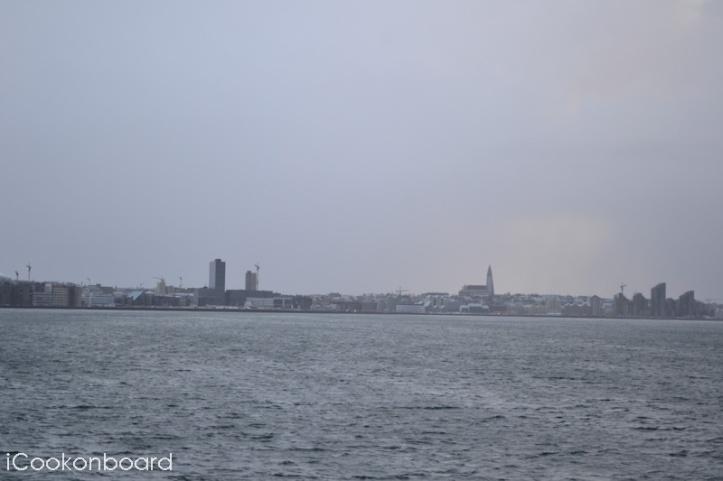 Life Onshore Reykjavik - Day 3