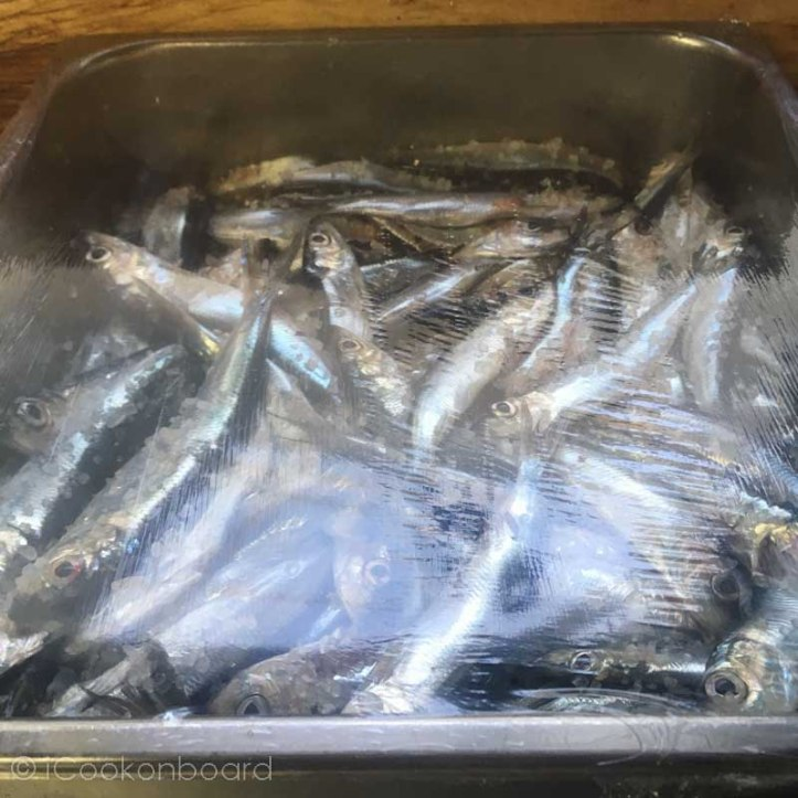 Dried Herring Fish Tuyo
